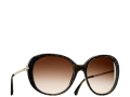 19-sunglasses-sheet.png.fashionImg.hi.png