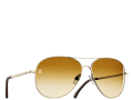 2aviator_sunglasses-sheet.png.fashionImg.hi.png
